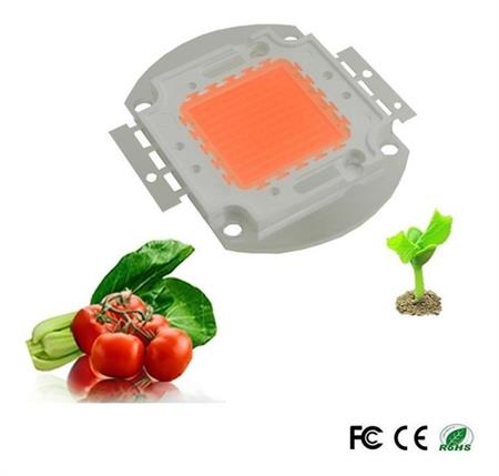 Led Cob 100w Full Spectrum Cultivo Indoor 30-34vdc 3a